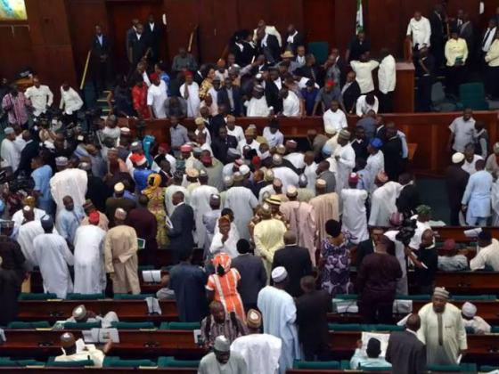 Reps bicker over Bill seeking 'to stop everybody from coming to Abuja to share money'